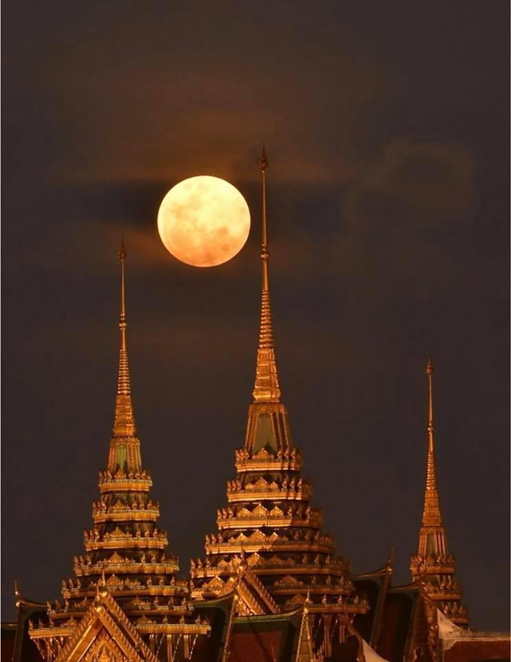 big ole bangkok moon by larry collins