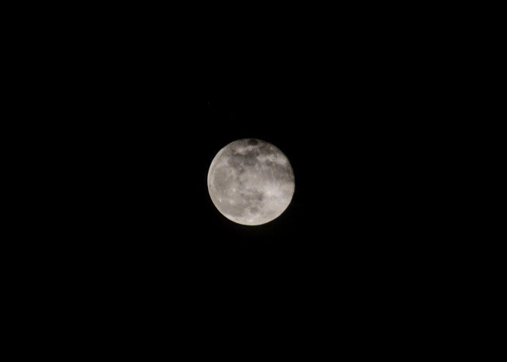 Moon by Jen Pezzo